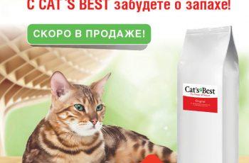 Новый Cat's Best для питомников!