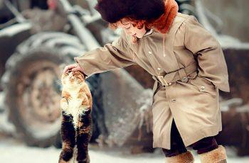 Немного о взаимоотношениях людей и кошек